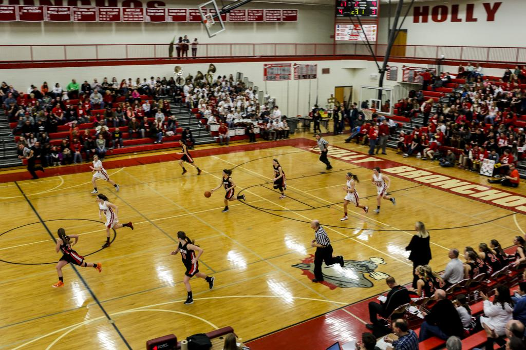 Vote now: Holly vs. Linden Flint Metro League girls matchup leads Game of the Week poll