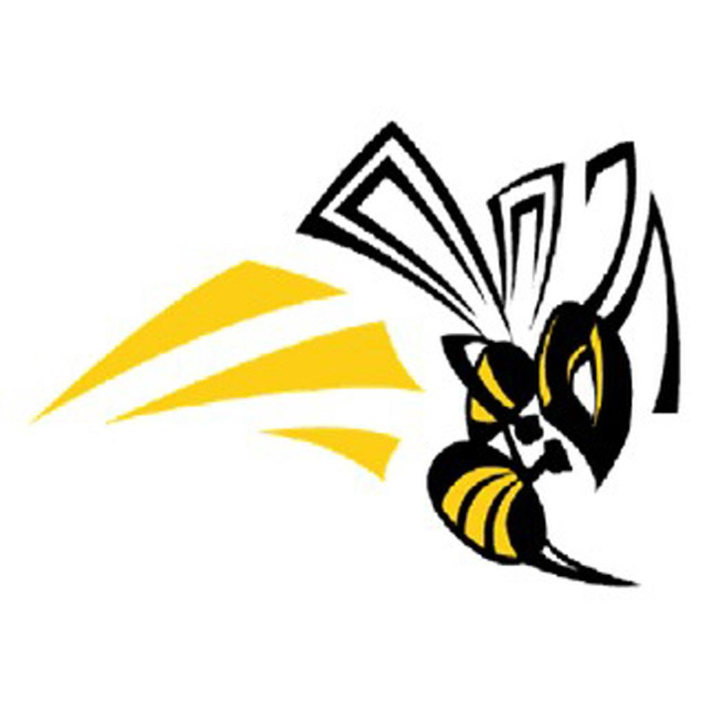yellow hornets logo - photo #17