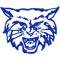 Dallastown Wildcats