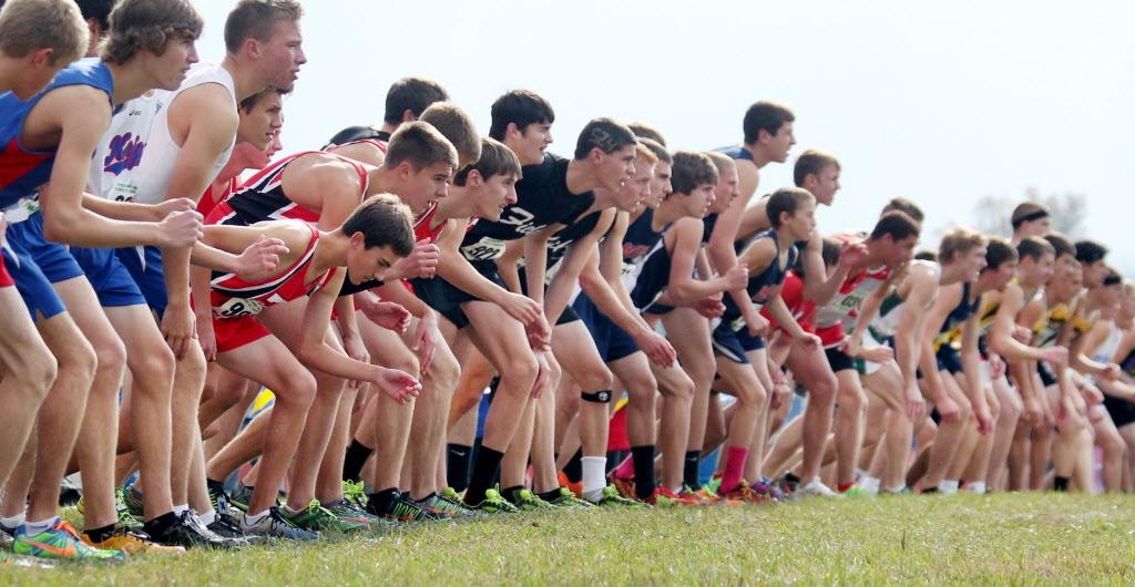 ohsaa state cross country meet 2013 results