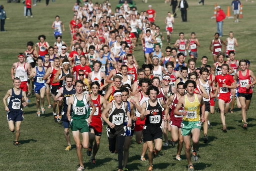 illinois state high school cross country meet results