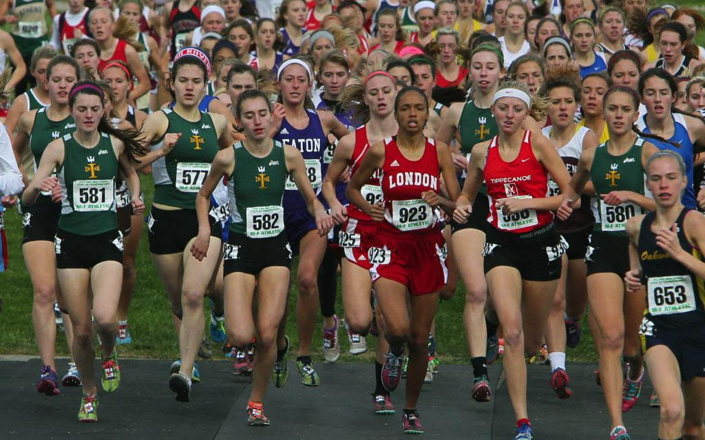 ohsaa state cross country meet 2013