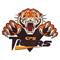 Carsonville-Port Sanilac Tigers