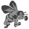Bridgman Bees