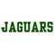 Allen Park Jaguars