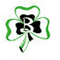 Berrien Springs Shamrocks
