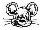 Ann Arbor Huron River Rats