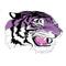 Caro Tigers