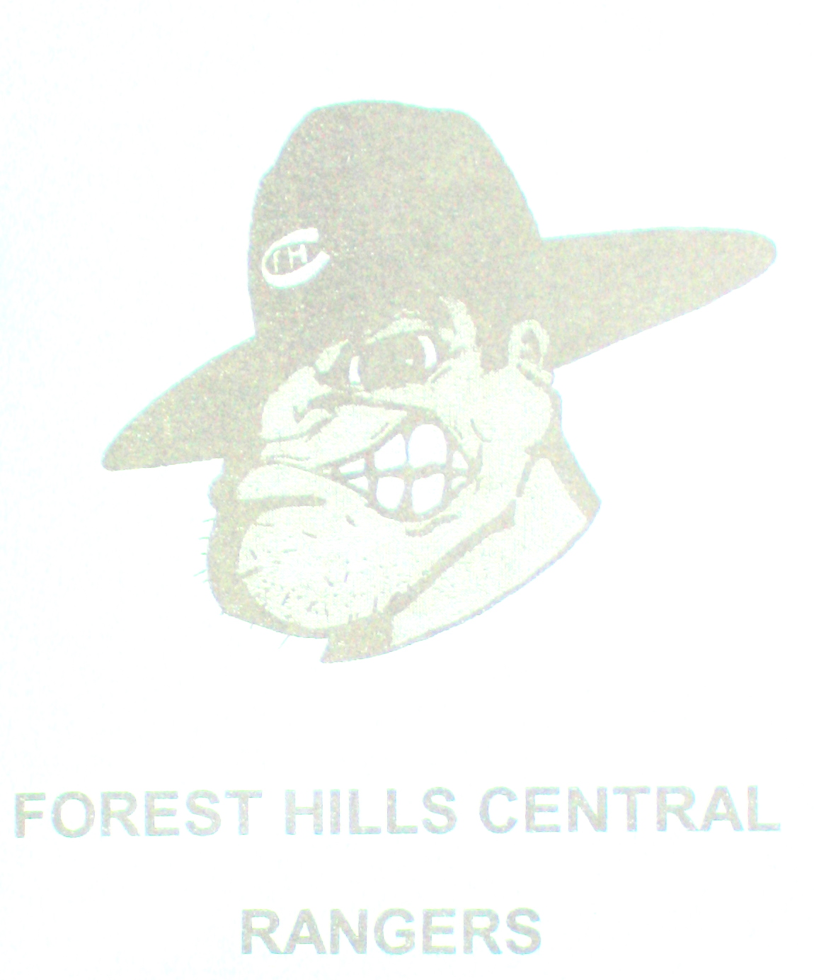 Grand Rapids Forest Hills Central Girls Bowling