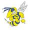 Saline Boys Golf Hornets