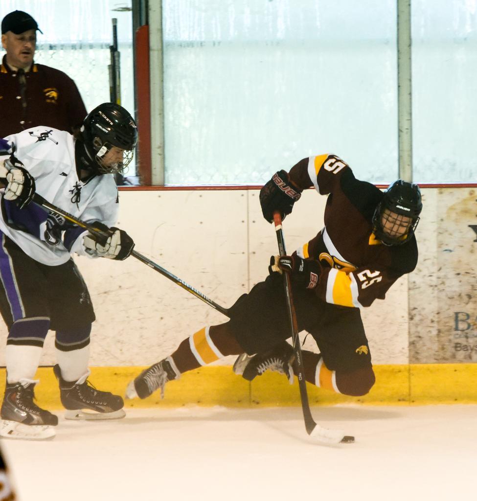 Icehockey Live