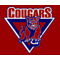 Cresskill Cougars
