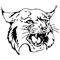 Whippany Park Wildcats