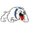 Passaic Tech Bulldogs
