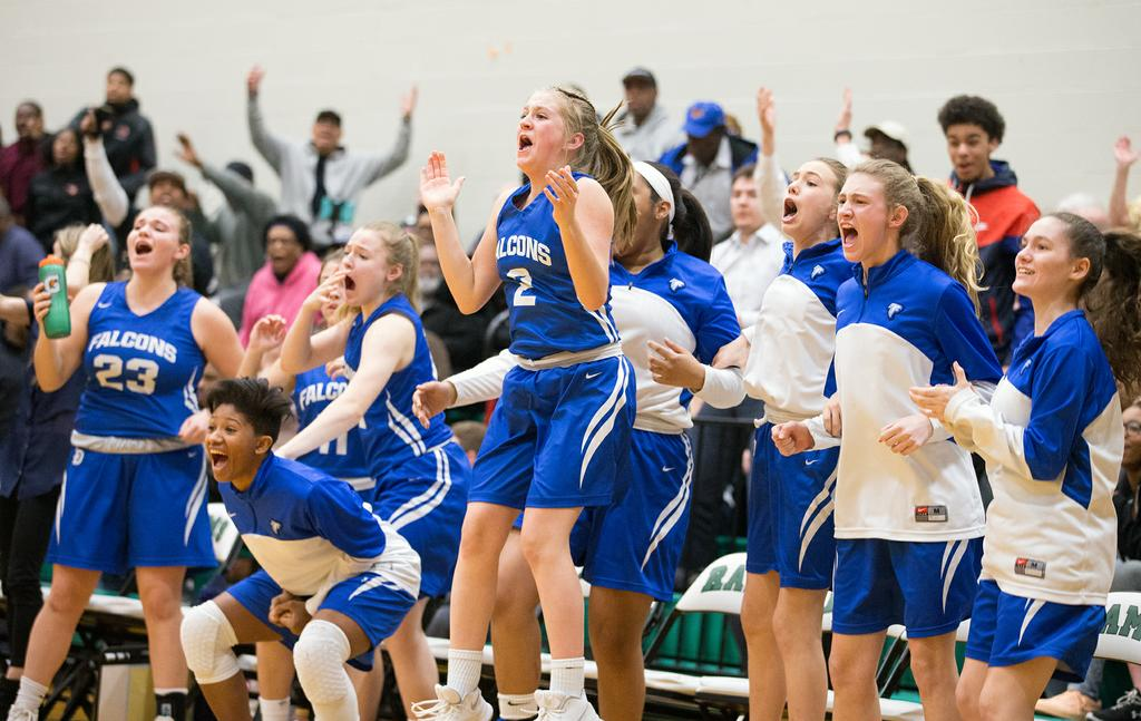 Lower Dauphin grounds Palmyra for tournament victory