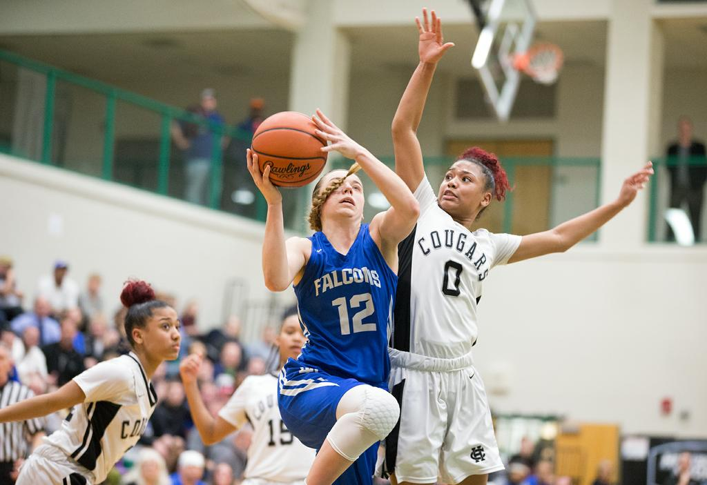 an analysis of the lower dauphin falcon basketball team Get the latest lower dauphin high school girls basketball news, rankings, schedules, stats, scores, results, athletes info, and more at pennlivecom.