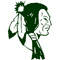 Twin Valley Football Raiders