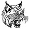 Halifax Football Wildcats