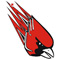 Pocono Mountain East Cardinals