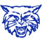 Dallastown Wildcats