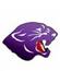 Chesapeake Boys Basketball Panthers