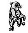 Buckeye Local Football Panthers
