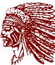Canal Winchester Football Indians