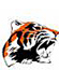Chagrin Falls Football Tigers