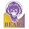 North Royalton Boys Tennis Bears